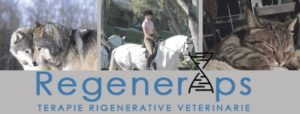 terapie rigenerative veterinarie gruppo fb